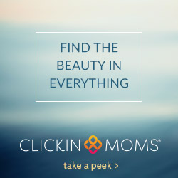 Find the Beauty (250x250)