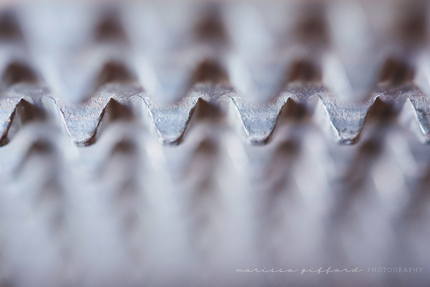 abstract macro pic by Marissa Gifford