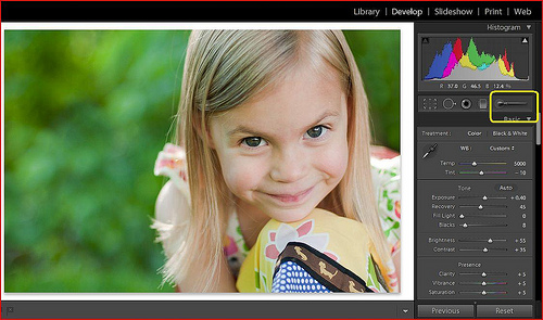 Tutorial | Lightroom Adjustment Brush photo