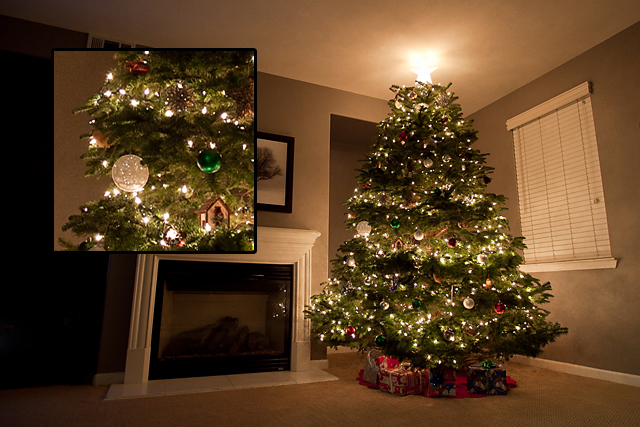 Christmas tree light photography tutorial by Stacey Haslem