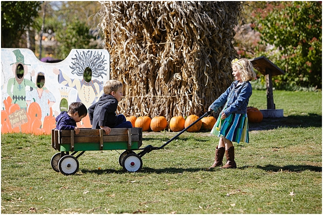 pumpkin patch lifestyle photographs by Kellie Penn