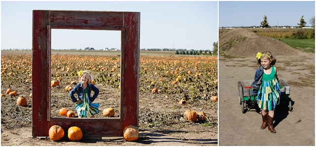 finding the perfect pumpkin by Kellie Penn