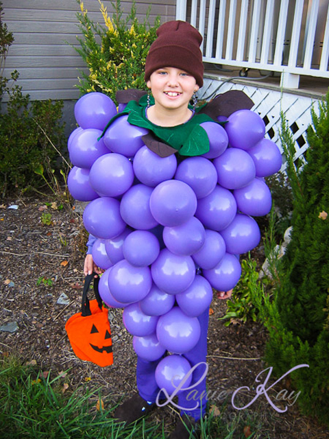 Grapes Halloween Costume and dress up by Lanie Coulter laniekay