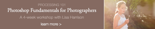 photoshop fundamentals for photographers online workshop with Lisa Harrison for Clickin Moms