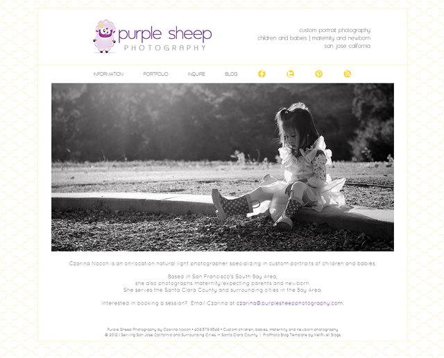 purplesheep website after online wordpress workshop