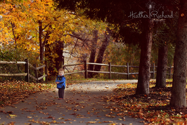 fall photography inspiration by Heather Richard