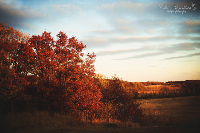 fall photography inspiration by Heidi Howard