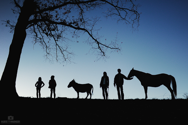 silhouette photograph of family and animals by Kate T Parker