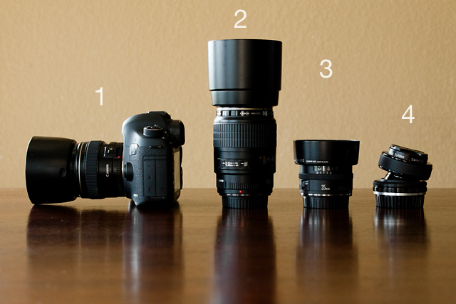 Canon camera gear of photographer Celeste Pavlik