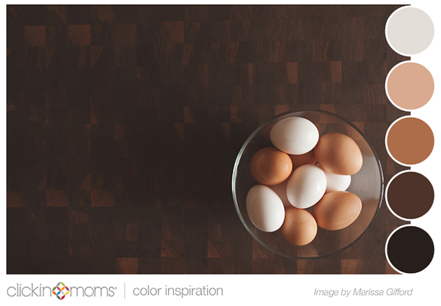 brown and beige color inspiration palette from Marissa Gifford photograph of eggs