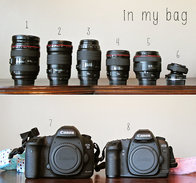 Canon photography lenses of Alicia Gould