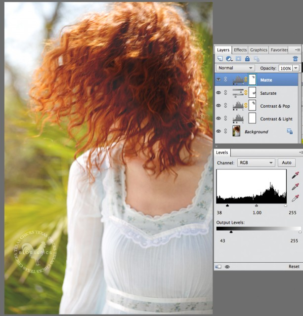 how to add a matte effect in PSE