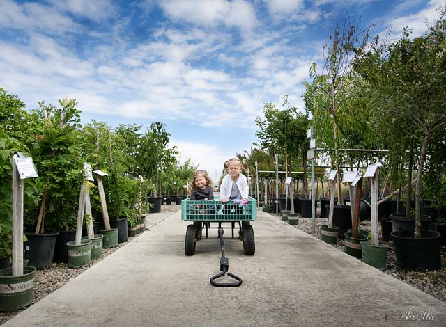 Green Acres Nursery