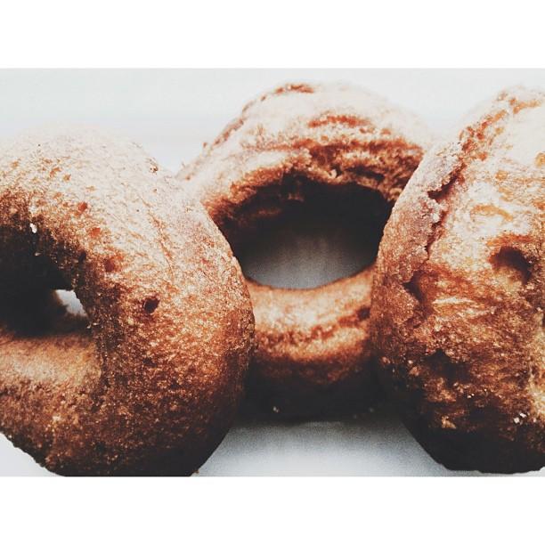apple cider doughnut instagram photo by johanna_mariel