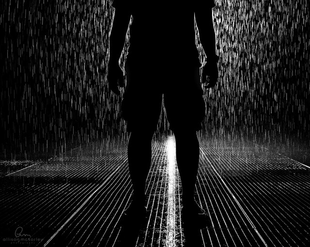silhouette in the rain by Allison McSorley