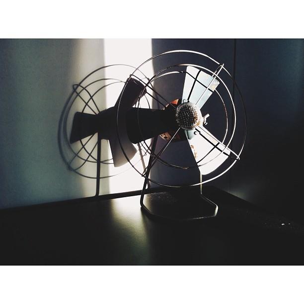 table fan instagram picture by wildaugust