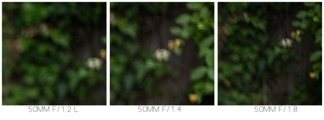 Canon 50mm lens comparison side by side
