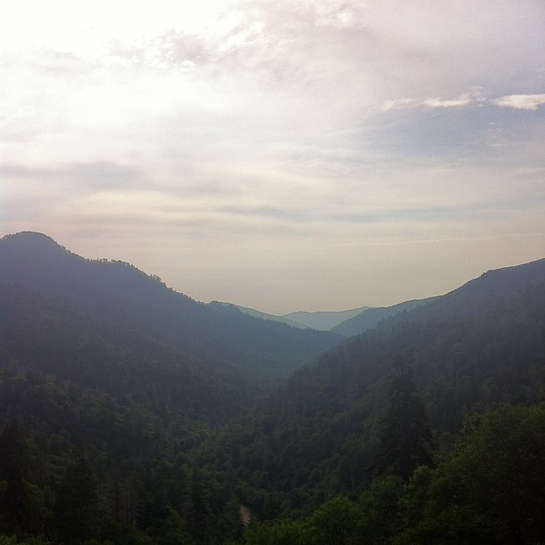 smoky mountain national park instagram photo by cr8tivemamarazzi