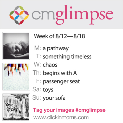 CMglimpse prompt list for August 12 2013