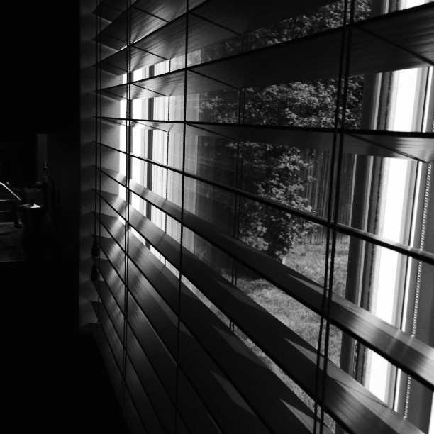 black and white window blinds instagram picture by travelingfish