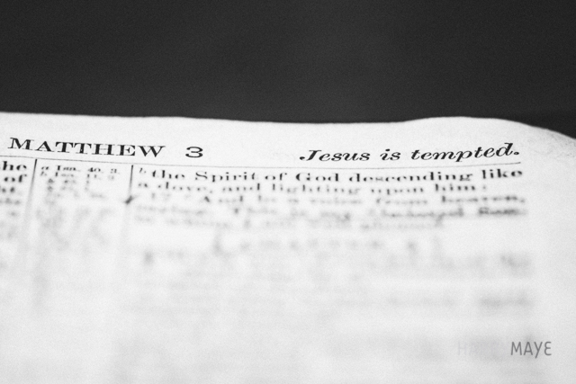 scriptural macro personal photography project by Danika Dickson