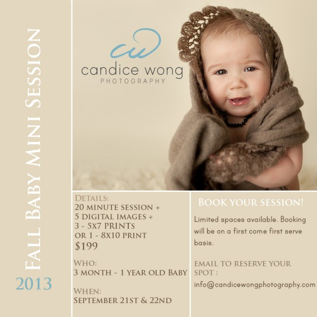 fall mini session promo by photographer candice wong