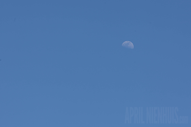 how to photograph the moon during the day by April Nienhuis