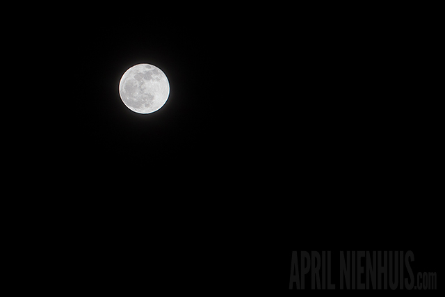 moon photography at night by April Nienhuis