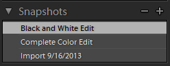 snapshots vs virtual copies in lightroom tutorial by Jamie Rubeis