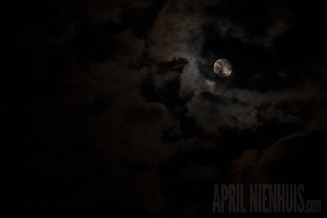 spooky moon photography by April Nienhuis