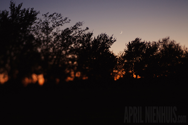 using a lensbaby to photograph the moon by April Nienhuis
