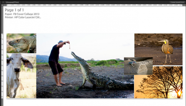 how to create a facebook cover in adobe lightroom by Danika Dickson