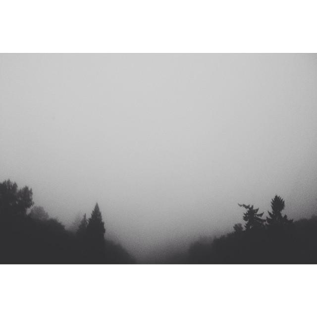 Landscape Photos on Instagram Foggy Landscape Instagram