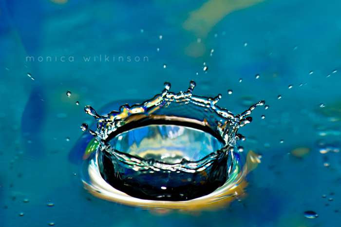 how to shoot water drops and crowns macro photography tutorial by Monica Wilkinson