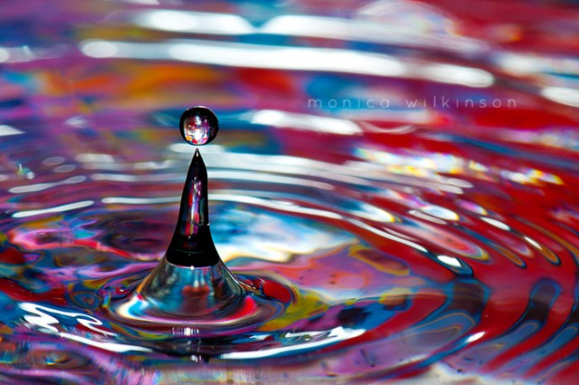 water macro photography by Monica Wilkinson