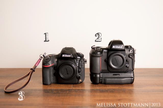 Nikon D800 and Nikon F100