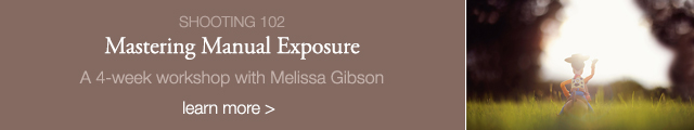 Mastering Manual Exposure online photography workshop with Melissa Gibson for Clickin Moms