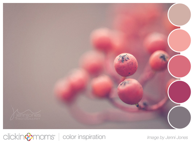 Color Palette Inspiration: Pink And Gray Berries From