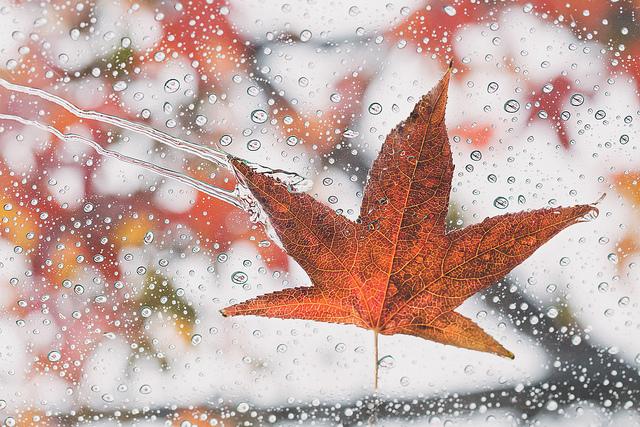 rain and weather photo by kimjane