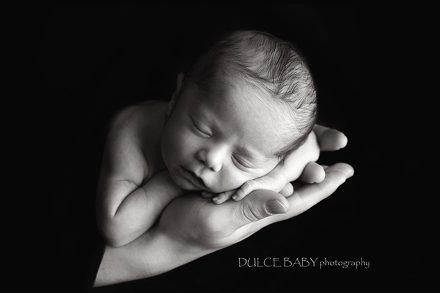 black and white newborn portrait by Martha Malcolm