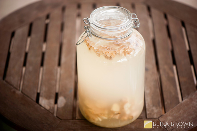 fermented ginger ale photo by Beira Brown