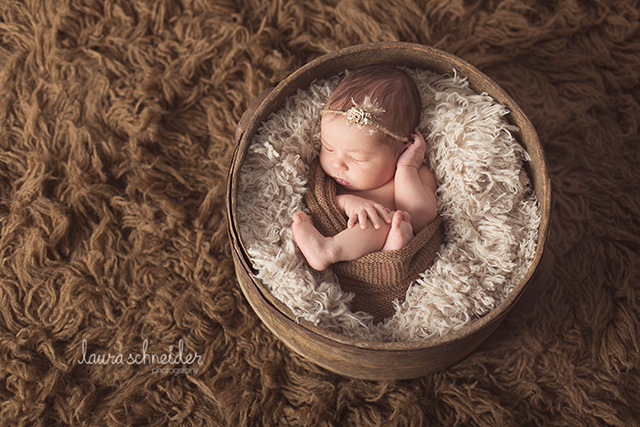 newborn photo by Laura Schneider