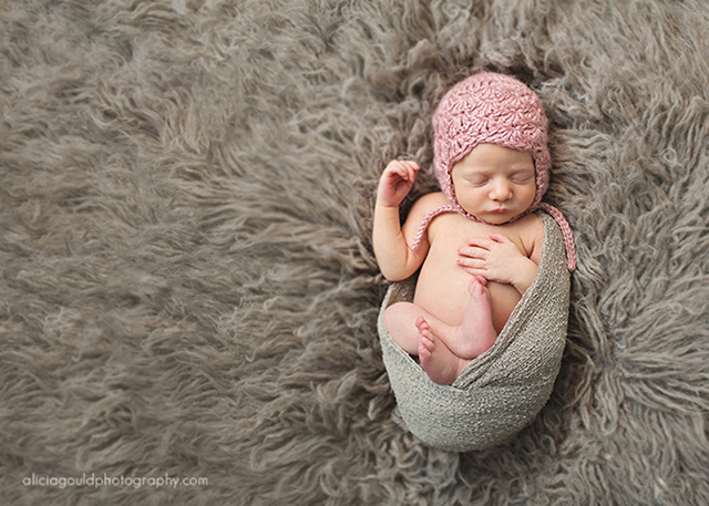 newborn photography by Alicia Gould
