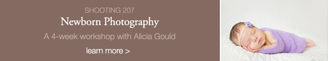 newborn photography online workshop by Alicia Gould