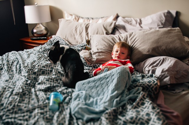 child and dog laying on bed photograph by Sarah Lalone