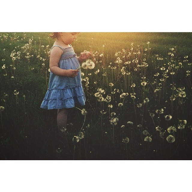 girl picking flowers instagram photograph by for_the_love_of_it_all
