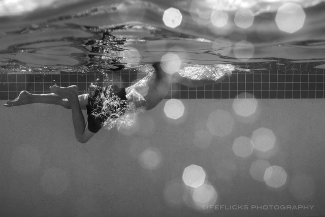 underwater photography journey by Ardelle Neubert of LifeFlicks Photography