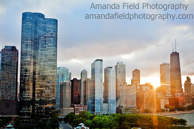 sun photography by amandafield