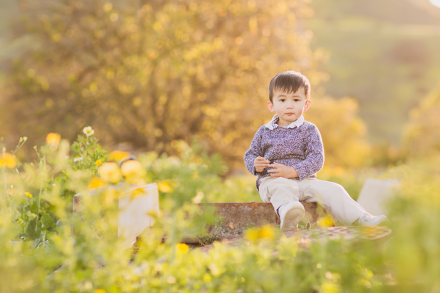 boy sitting in field photograph