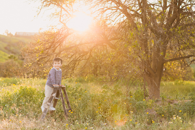 boy standing on ladder in middle of field photo